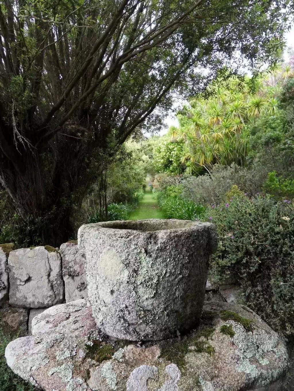 Une all e du jardin botanique fondation belem photo 12097 for Boutique du jardin botanique